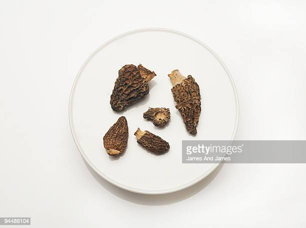 Dried Morel Mushrooms on white plate