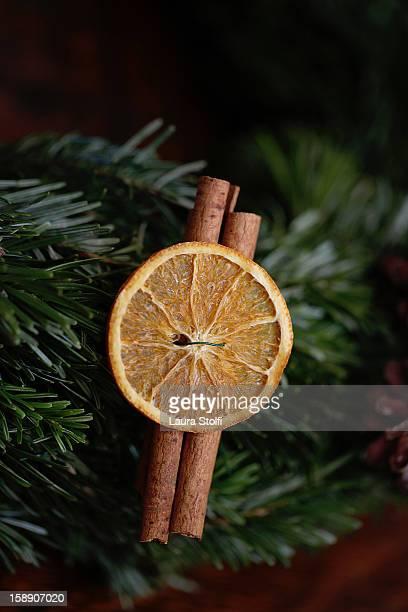 Dried Orange and Cinnamon Tree Decoration