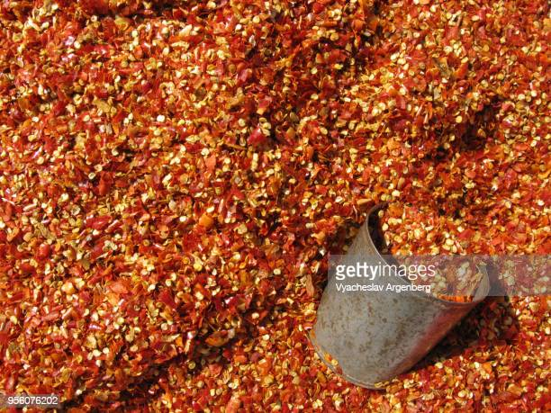 """dried red chili (chilli) pepper, """"bird eye chili"""", thai chili, myanmar (burma) - argenberg stock pictures, royalty-free photos & images"""