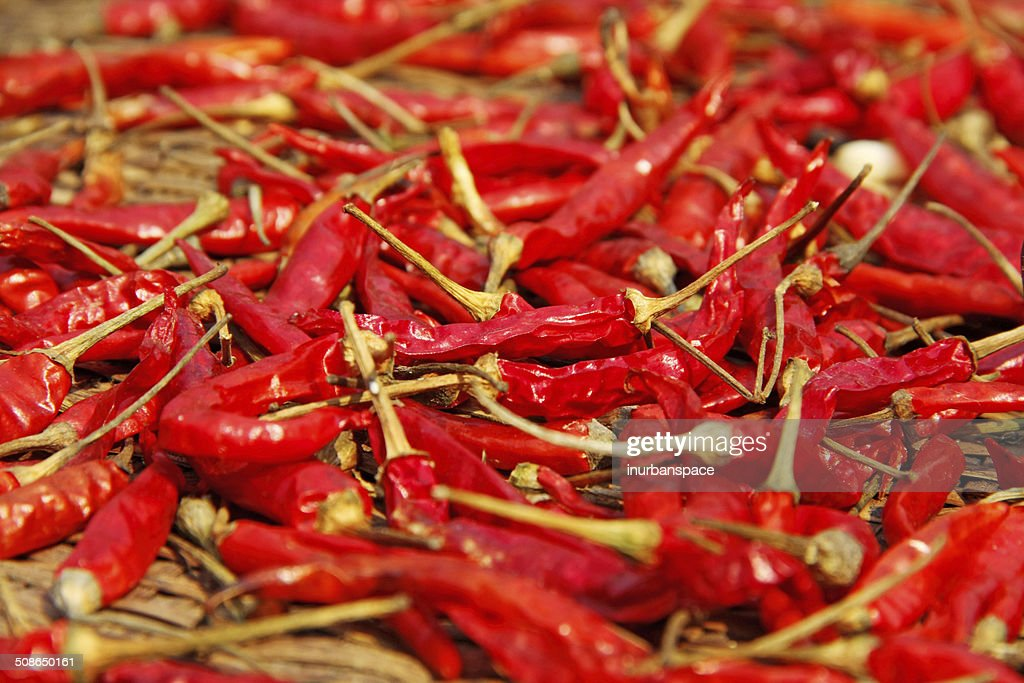 Dried red chilli, food ingredient : Stock Photo