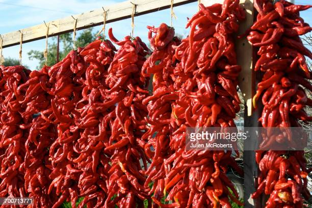 Dried red peppers hanging outdoors