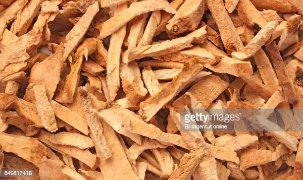 Dried Roots Of The Medicinal Plant Greater Yam Guyana Arrowroot Winged Yam Dioscorea Alata Bi Xie