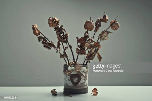 dried roses - fading stock pictures, royalty-free photos & images