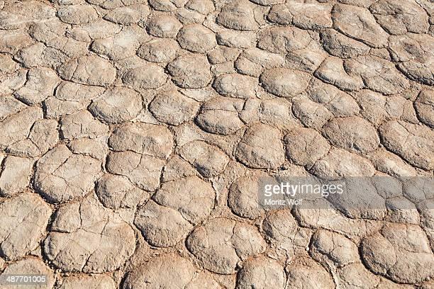 Dried sandy ground, Dead Pan, Sossusvlei, Namib Desert, Namibia