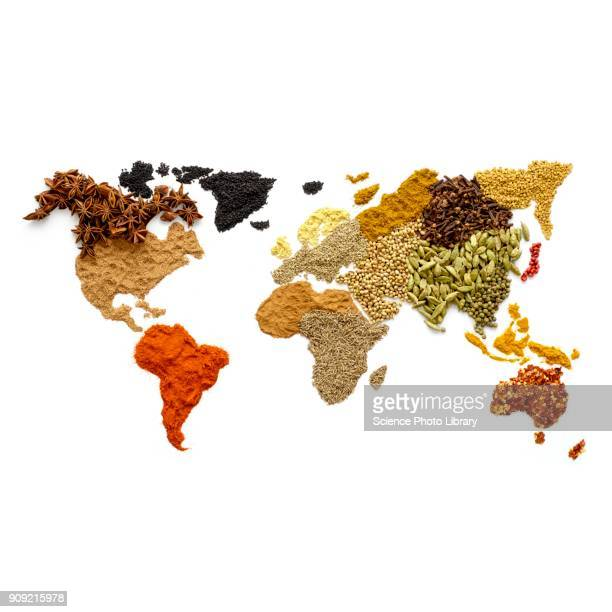 Dried spices in world map shape