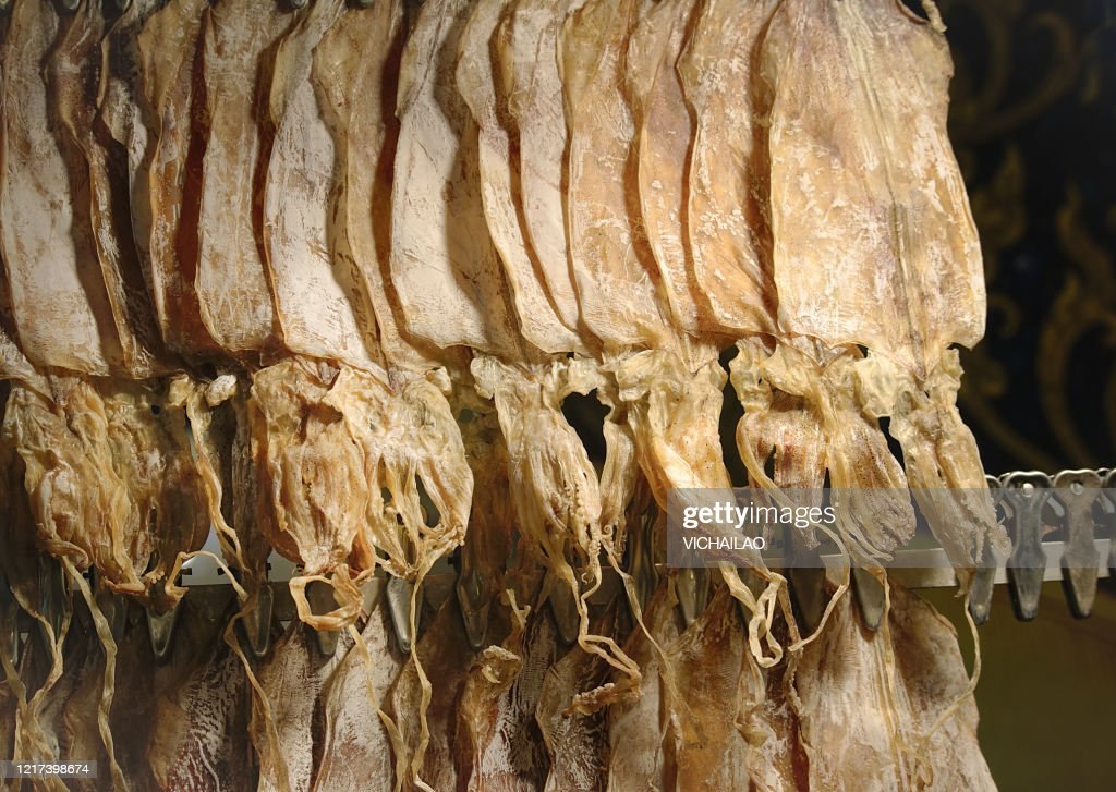 Dried squid for grilled squid in row sale on street night market. : Stock Photo
