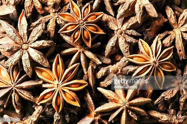 Dried star anise cooking spice in a large pile