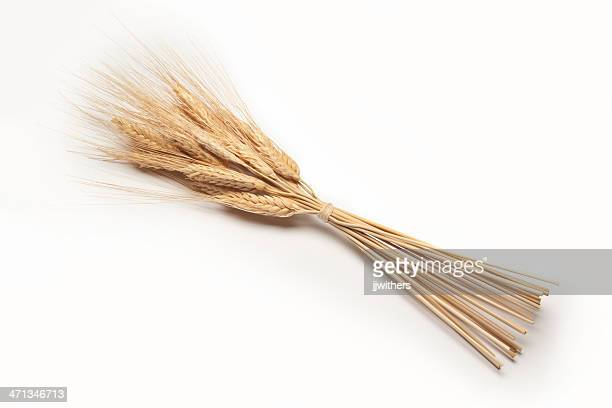 dried wheat bundled stalks - bundle stock pictures, royalty-free photos & images