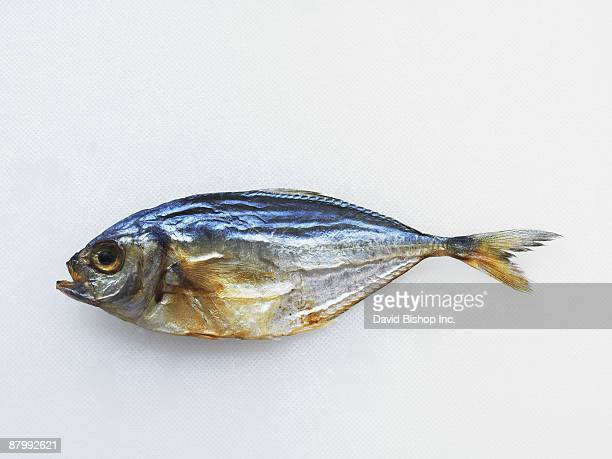 Dried Whole Fish