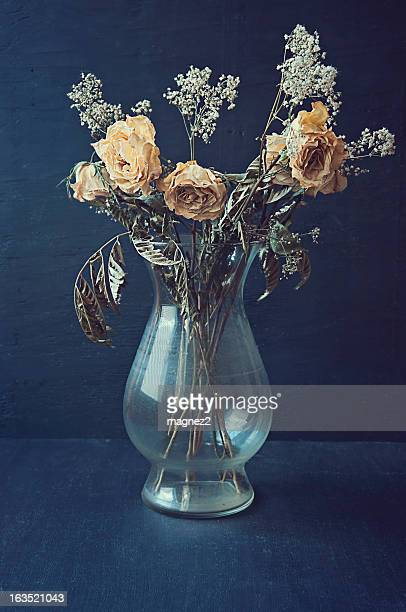 dried yellow roses in a vase - dead stock pictures, royalty-free photos & images