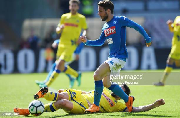 Dries Mertens of SSC Napoli vies with Nenad Tomovic of AC Chievo Verona during the serie A match between SSC Napoli and AC Chievo Verona at Stadio...