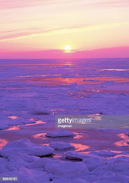 drifr ice and sunset - drift ice stock pictures, royalty-free photos & images