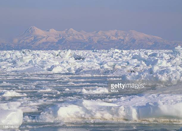 drift ice, shibetsu, hokkaido, japan - drift ice stock pictures, royalty-free photos & images