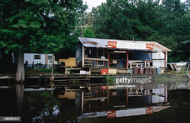 drift in landing on caddo lake. - caddo lake stock pictures, royalty-free photos & images