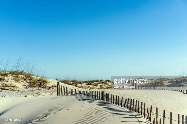 drifting dunes with two sand fences, one with shadows, under blue sky - southeast stock pictures, royalty-free photos & images