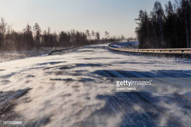 drifting snow on winter road with snowdrifts on the roadside in the snowstorm on a sunny day. - árvore de folha caduca - fotografias e filmes do acervo
