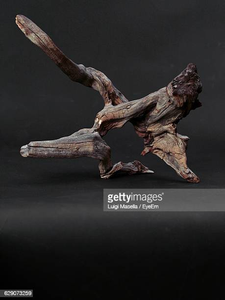Driftwood Against Gray Background