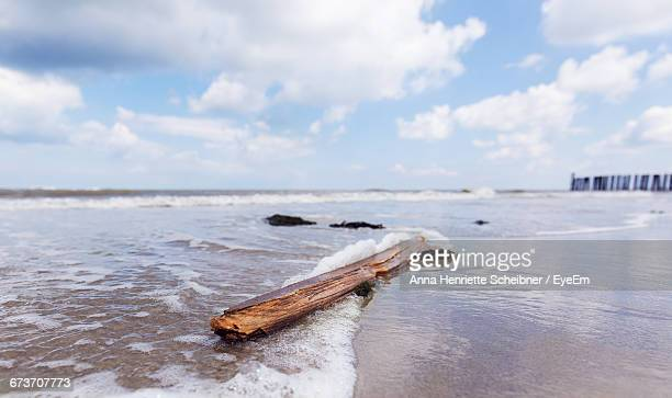 Driftwood At Sea Shore Against Sky