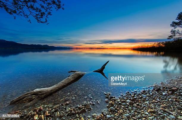 Driftwood at Sunset  - lake Chiemsee