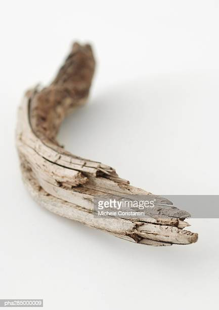 Driftwood, close-up