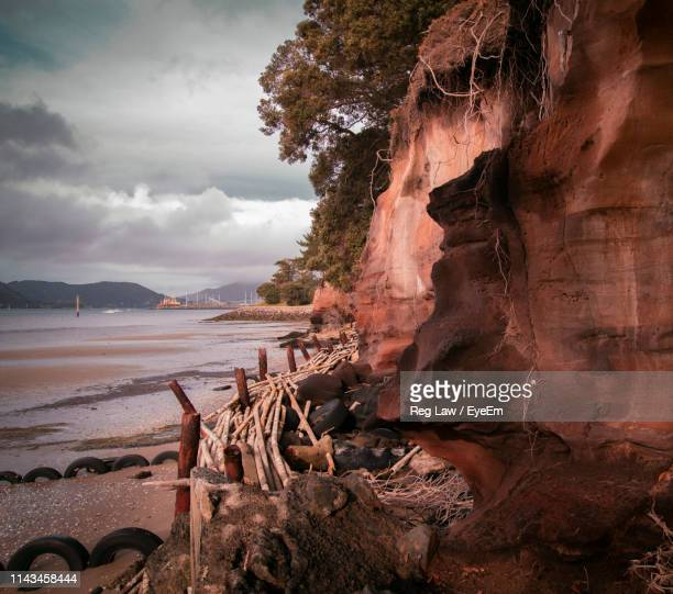 driftwood on beach by sea against sky - whangarei heads stock-fotos und bilder