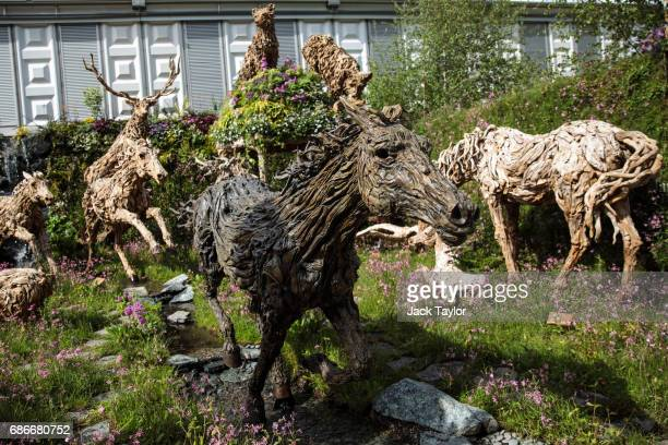 Driftwood sculptures of animals by sculptor James Doran Webb on display at the Chelsea Flower Show on May 22 2017 in London England The prestigious...