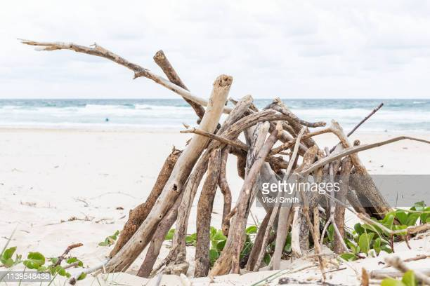 driftwood stack on the beach - firewood stock pictures, royalty-free photos & images