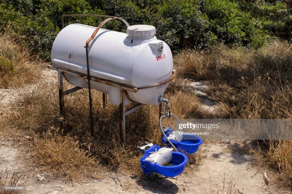 Drinking water tank for street animals in Cesme. : Stock Photo