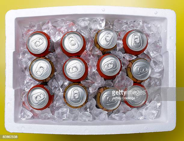 drinks in cooler - esky stock photos and pictures