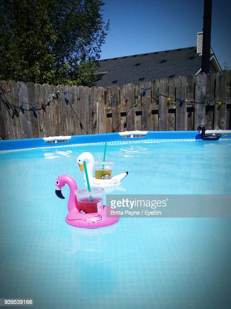 Drinks In Inflatable Duck Swimming On Pool