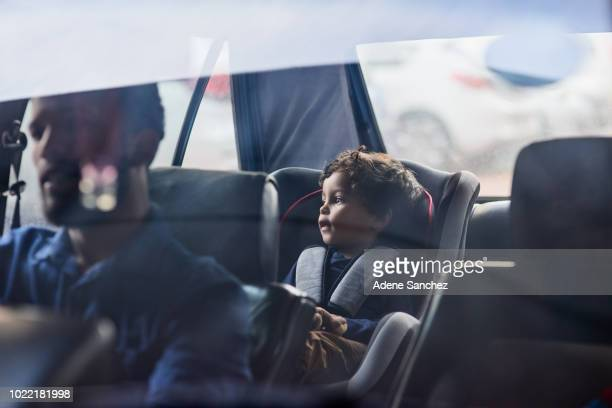 drive safely with your precious cargo - belt stock pictures, royalty-free photos & images