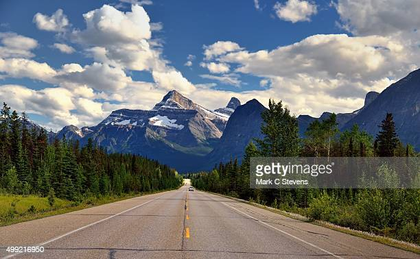 A drive through the Canadian Rockies and Icefields Parkway