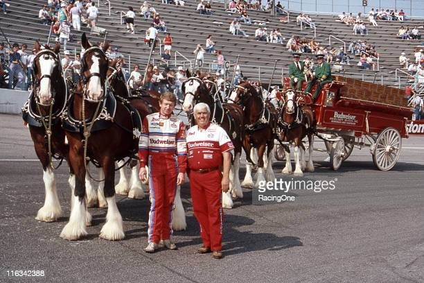 Driver Bill Elliott and his car owner Junior Johnson on the front straight of North Wilkesboro Speedway with the famed Budweiser Clydesdales before a...
