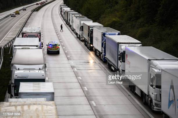 Driver walks between vehicles as heavy goods vehicles and cargo lorries are seen queued along the M20 motorway as part of the Operation Stack traffic...