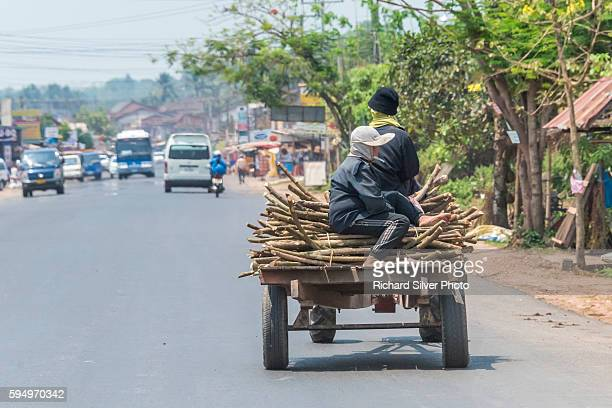 Driver with firewood on back of truck in Vientiane, Laos