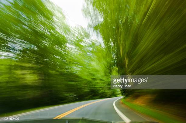driving fast on winding road, motion blur of trees - nancy green stock pictures, royalty-free photos & images