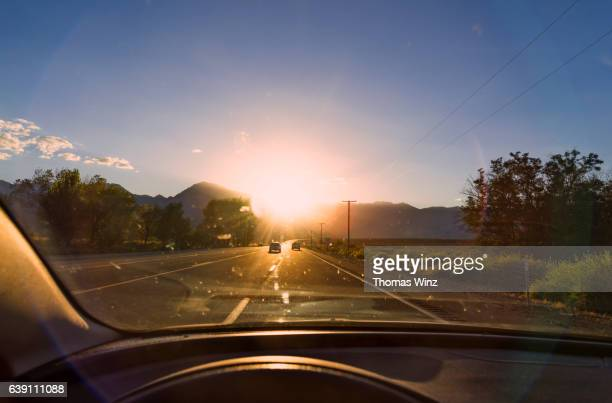 Driving in bright Sunlight