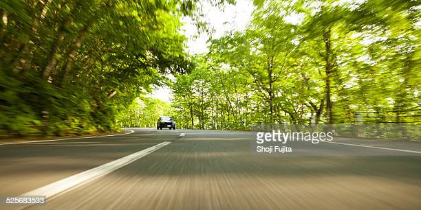 Driving in green road