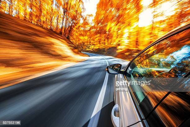 Driving in the fall