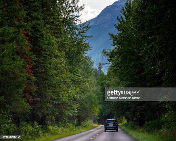 driving the stunning going to the sun road, glacier national park - western usa stock pictures, royalty-free photos & images