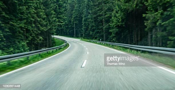 driving through a forest , motion - biegung stock-fotos und bilder