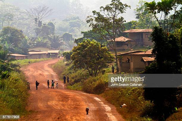 driving through the forest - gabon stock pictures, royalty-free photos & images