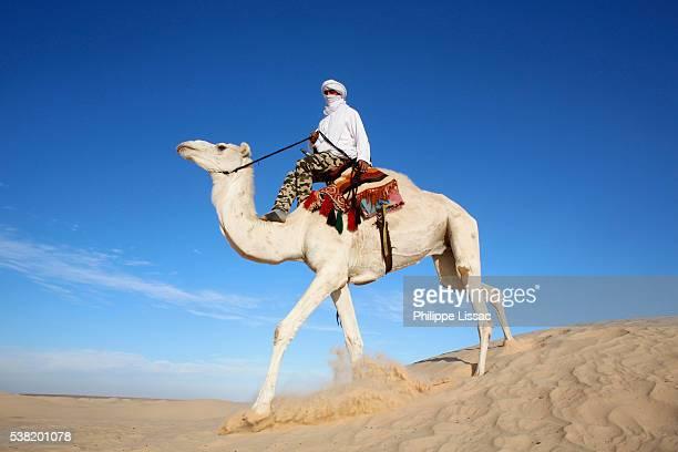 Dromedary rider in the Sahara