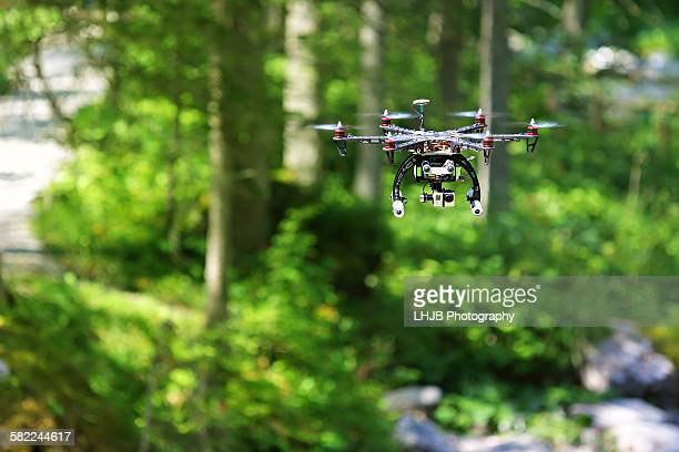 Drone flying and filming in the forest