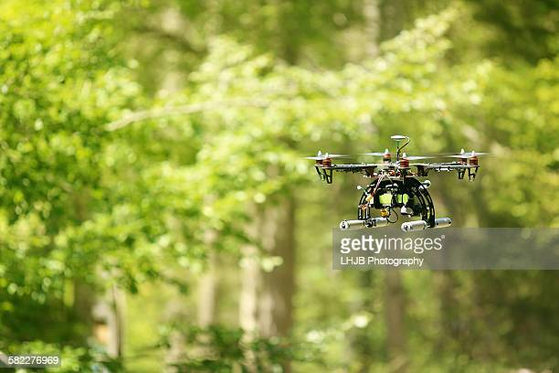 Drone flying in the forest on a sunny