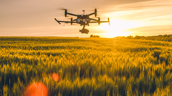 Drone flying over field at sunset 1094620200