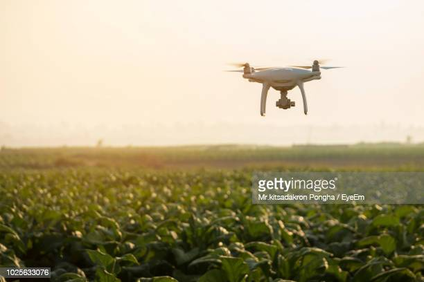 drone flying over plants on field - drone photos et images de collection