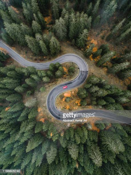drone image of a car driving on a winding forest road, dolomites, italy - s shape stock pictures, royalty-free photos & images
