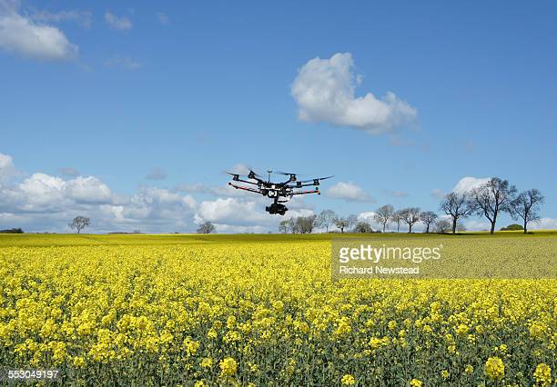drone in flight - crop stock pictures, royalty-free photos & images