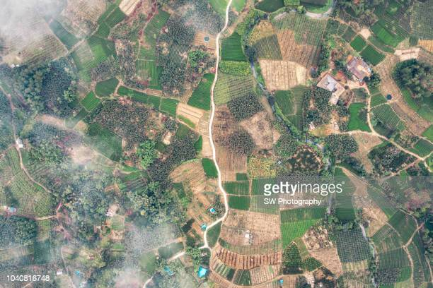 drone photo of a chinese agriculture village - satellite view stock pictures, royalty-free photos & images